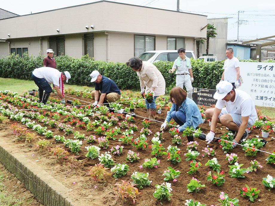虫掛花壇整備
